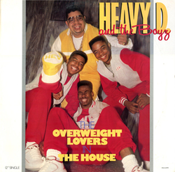 Heavy D Cover